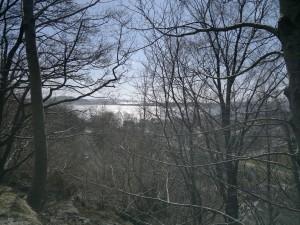 Utsikt oppe i bakken