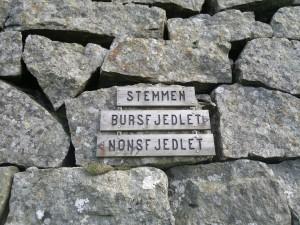 Steinstem