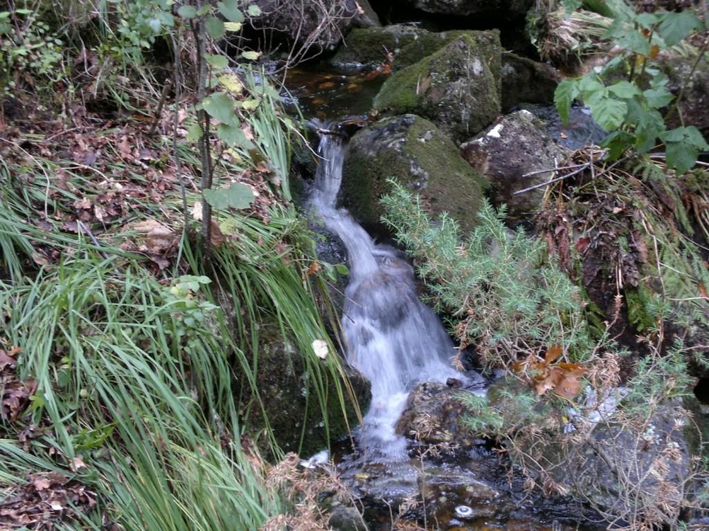 Mye vann på høsten
