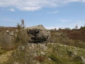 Hodet i stein