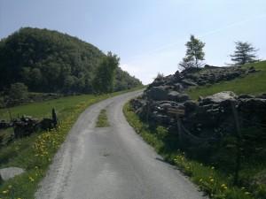Veien oppover