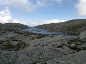 Høylandsnatur