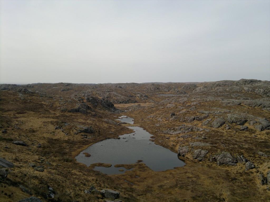 Høylandsjæren