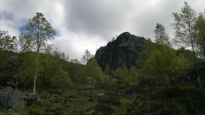 Skogsgrensen nærmer seg