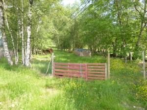 Inn den røde grinda til høyre før gården
