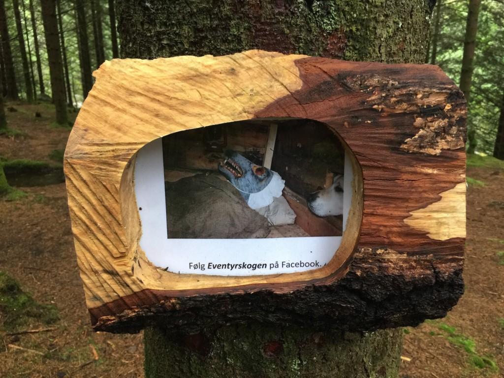 Det er satt opp mange informasjonsskilter i hele skogen