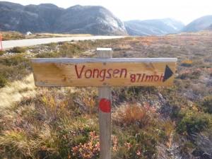 Skiltet ved veien