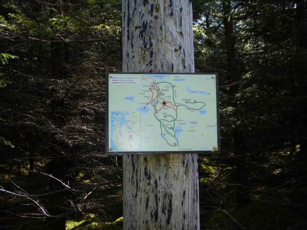 Mange kart er satt opp flere plasser