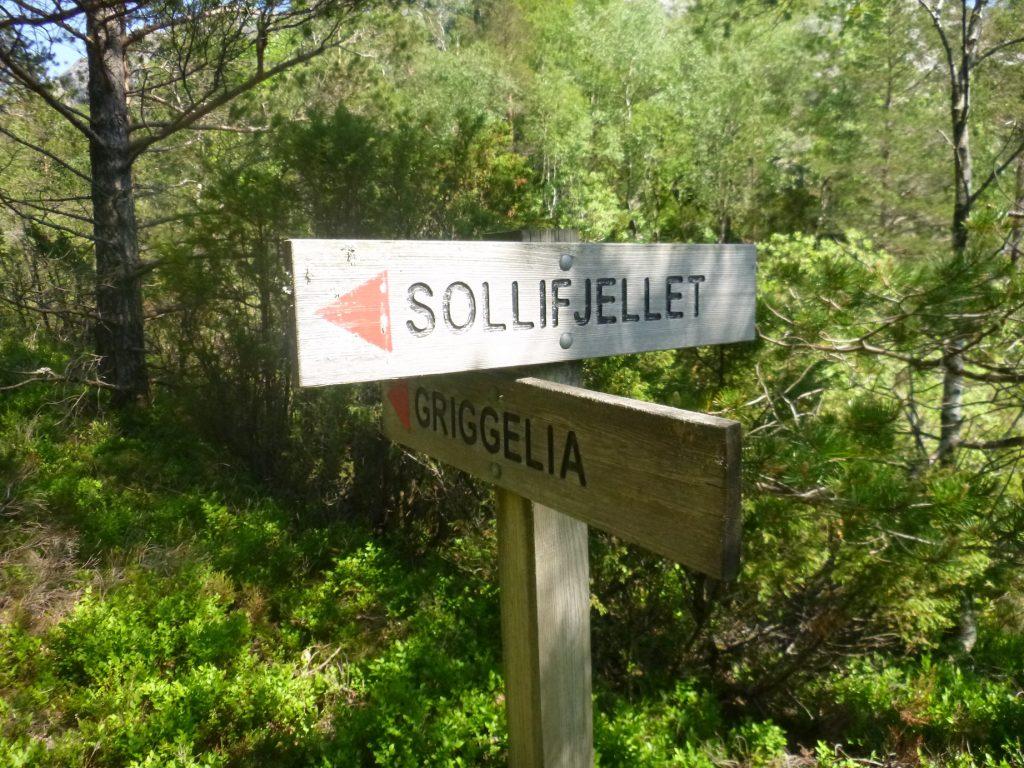 Det er en snarvei over til Sollifjell også