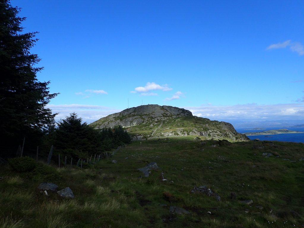 Rennesøyhodnet