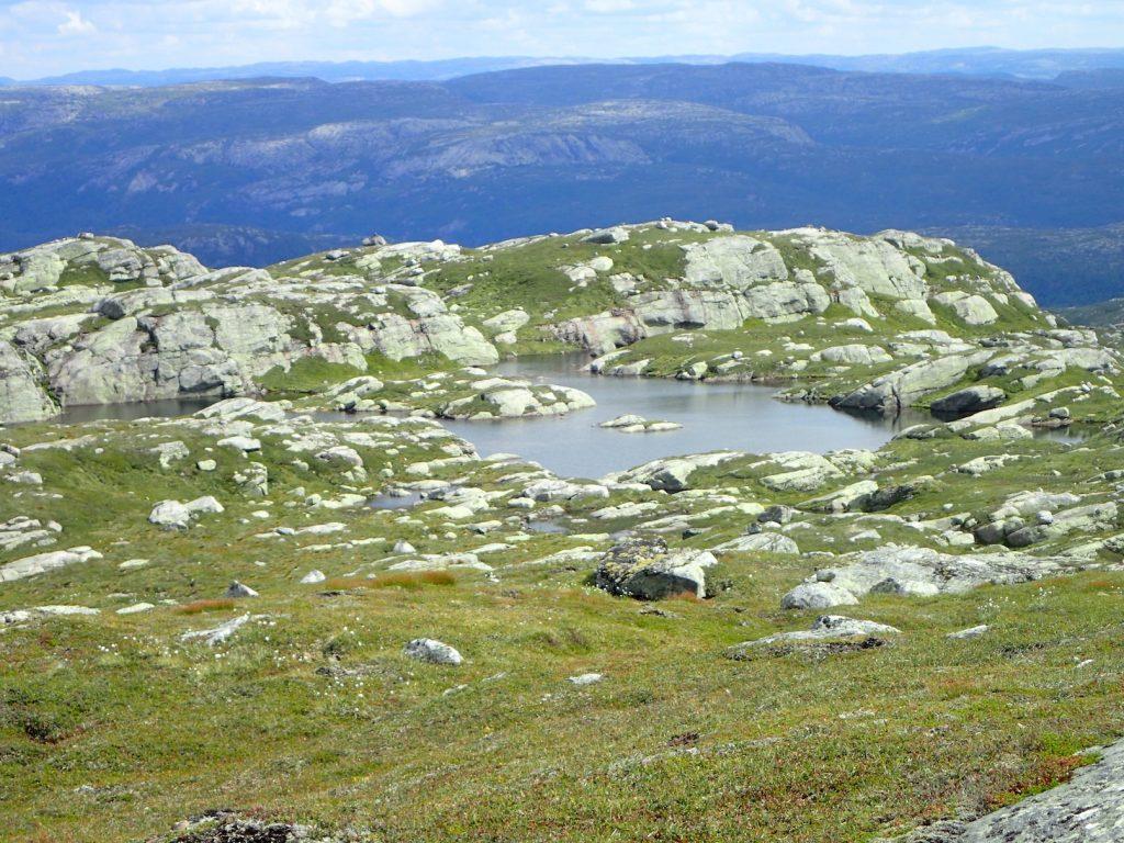Mange badekulper i området
