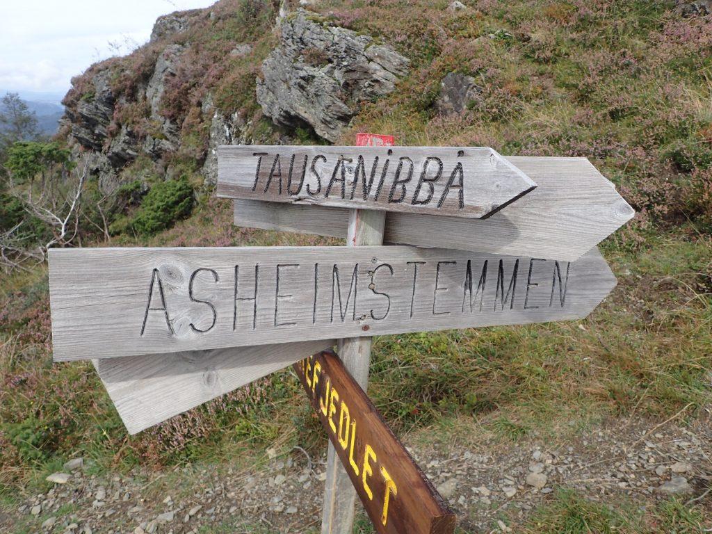 Lurer på hva Tausanibbå er for noe ?