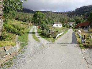 Veien til venstre her